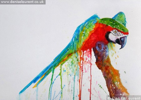 Harlequin Macaw parrot watercolour painting