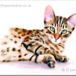 New Bengal Cat Print