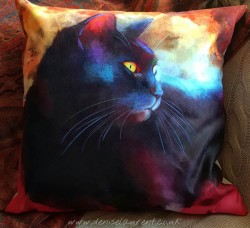 black cat cushion - day dreamer