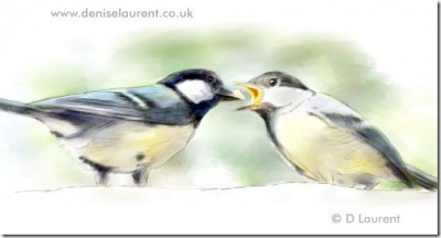 great-tit-feeding-sketch1.jpg