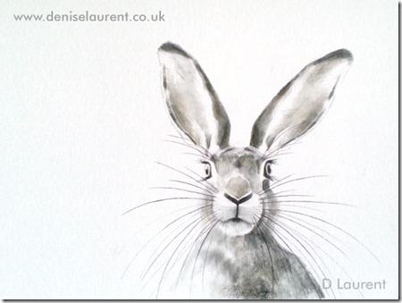 A hare sketch denise laurent