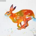 Hopalong Hare In Watercolour