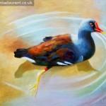 Moorhen Painting