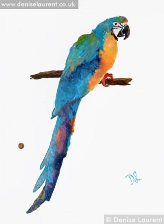 parrot no1