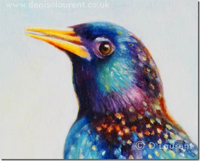 Starling detail