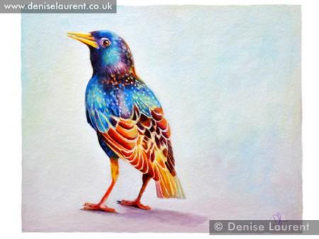 starling-print