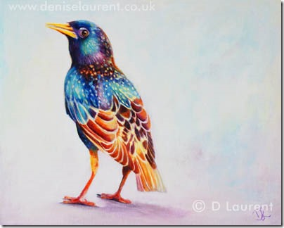 Starling by D Laurent