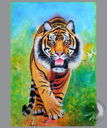 walking tiger 20x14 watermedia painting